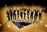 WHS Varsity Volleyball Team